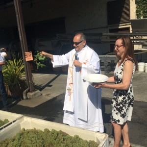 Father Gordon Kalil of the Saint Helena Catholic Church (with Violet Grgich) blesses the grapes with fresh vines.