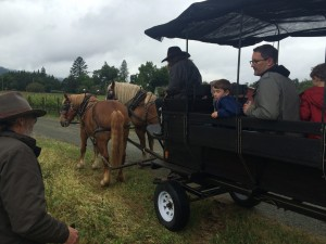 Enjoying an afternoon carriage ride at Landmark Vineyards
